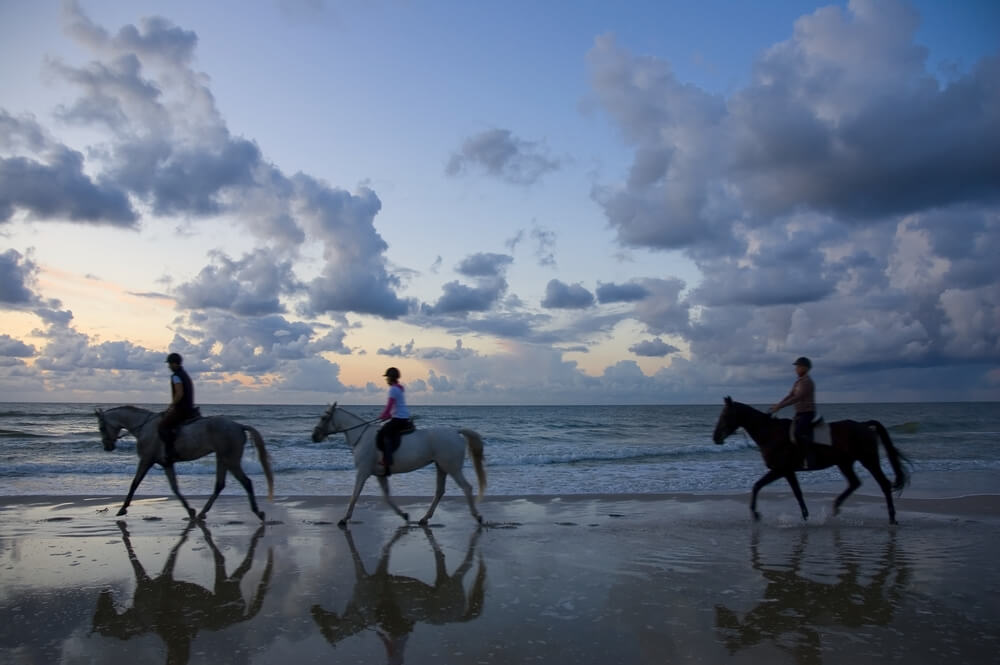 Photo of a Group Horseback Riding on the Oregon Coast at Dusk.